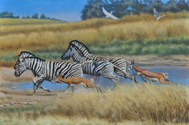 oil painting by Claude Buckley- Zebras, oil on canvas, private collection, Camden, SC