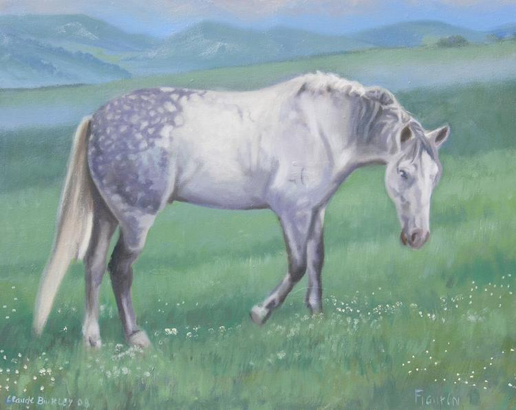 Oil painting of an Andalusian horse by Claude Buckley, private collection